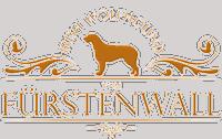 www.iw-fuerstenwall.de