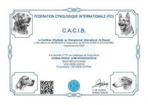 CACIB-SI_20200809