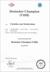 CH-D_Carlotta vom Nordersteen_klein